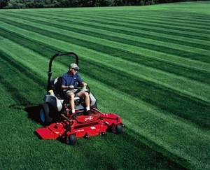 lawn care in fall